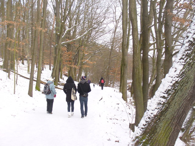 Schlachtensee - Winterwanderweg (Winter Countryside Path)