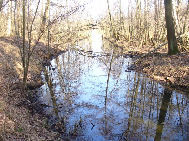 Glasower Bach (Glasow Stream)