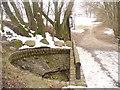 UUU8931 : Luebars - Osterquelle (Easter Spring) von Colin Smith