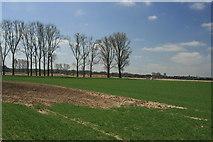 Feld nahe dem Tagebau