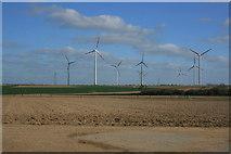 Windräder bei Borschenich