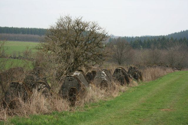 Westwall bei Hollerath