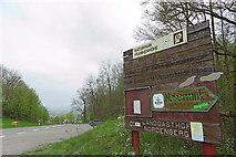 Obernordenberg: Europäische Wasserscheide