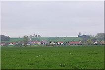 Wiese  bei Unterasbach