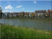 Der Neckar bei Bad Cannstatt