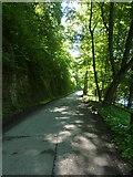 Weg vom Freibad Hoheneck nach Ludwigsburg