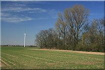 Felder bei Lützerath