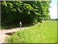 UUU7427 : Eiskeller - Grosse Kienhorst - Mauerweg (On the Berlin Wall Path) von Colin Smith