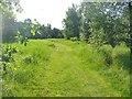 UUU7425 : Falkenhagen Ost - Wanderweg (East Falkenhagen - Footpath) von Colin Smith