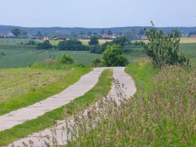 Feldweg bei Kerkow (Country Lane Near Kerkow)