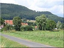 Emmerthal Amelgatzen - Sonnenblumenfeld