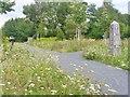UUU9606 : Schoenefeld - Radweg mit Wegweiser (Cycle Path and Waymarker) von Colin Smith