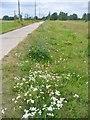 UUU9606 : Schoenefeld - Mauerweg (Berlin Wall Way) von Colin Smith