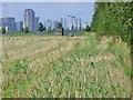 UUU9607 : Grossziethen - Berliner Mauerweg (Berlin Wall Way) von Colin Smith