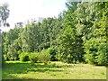 UUU9508 : Gropiusstadt - Rudower Waeldchen (Little Rudow Wood) von Colin Smith