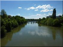 Der Neckar bei Stuttgart-Mühlhausen