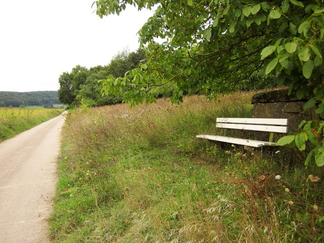 Seat on the slopes of the Our valley