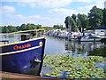 UUU7933 : Hennigsdorf - Stadthafen (Town Harbour) von Colin Smith