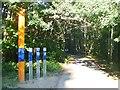 UUU7827 : Erlengrund - Berliner Mauerweg (Berlin Wall Way) von Colin Smith