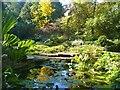 UUU9612 : Berlin - Späth-Arboretum von Colin Smith