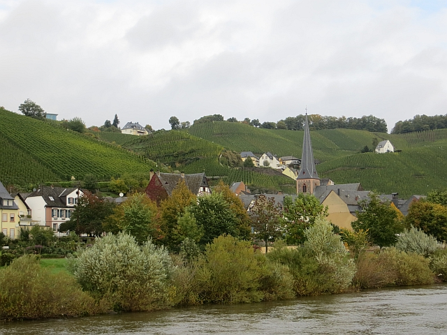 Banks of the Mosel, Ürzig