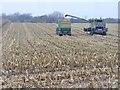 UUU8334 : Stolper Heide - Maisernte (Stolpe Heath - Maize Harvest) von Colin Smith