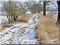 UUU7417 : Gatow - Rieselfelderweg (Path Through Former Sewage Farmland) von Colin Smith