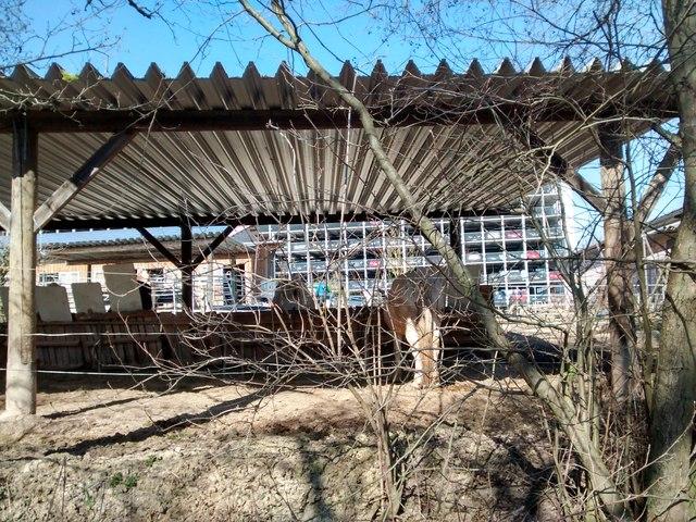 hinter dem pferdeunterstand das riesige parkhaus der ina sch ffler gruppe in herzogenaurach. Black Bedroom Furniture Sets. Home Design Ideas