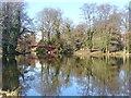 UUU8420 : Schlosspark Charlottenburg - Karpfenteich (Charlottenburg Palace Park - Carp Pond) von Colin Smith