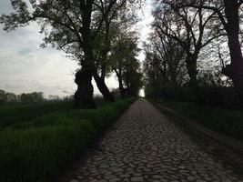 videos von carmella bing Brüssow(Brandenburg)