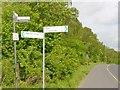 UUU8827 : Wilhelmsruh - Berliner Mauerweg (Berlin Wall Way) von Colin Smith