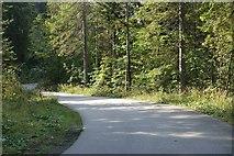 Straße vom Spitzingsee zum Forsthaus Valepp