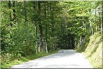 Mautstraße von Rottach-Egern zur Valepp