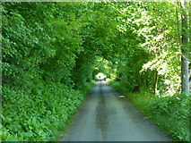 Neckarradweg bei Poppenweiler