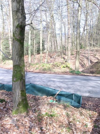 lindlar zaun zum schutz der fr sche bei schmitzh he mgrs 32ulb7850 geograph deutschland. Black Bedroom Furniture Sets. Home Design Ideas