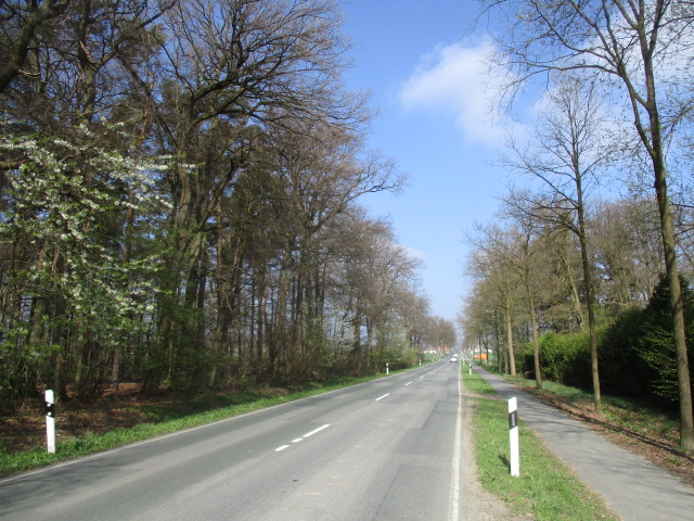 Bad Rothenfelde, Frankfurter Straße