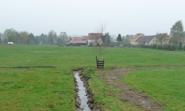 Berbisdorf - small drain on farmland