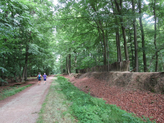 Raesfelder Tiergarten - Palisadenwall (Earth Wall and Palisade)