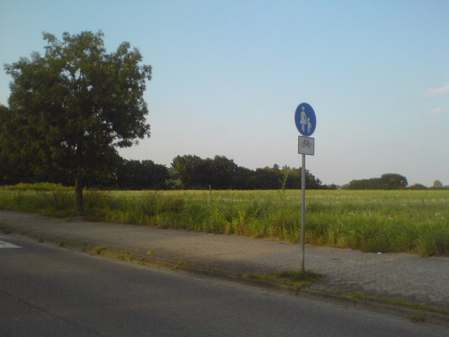 Feld am Helleweg (Field on Helleweg)