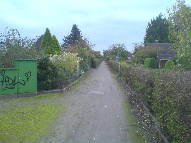 Weg in den Kleingärten bei Ledeburg (Lane between allotments near Ledeburg)