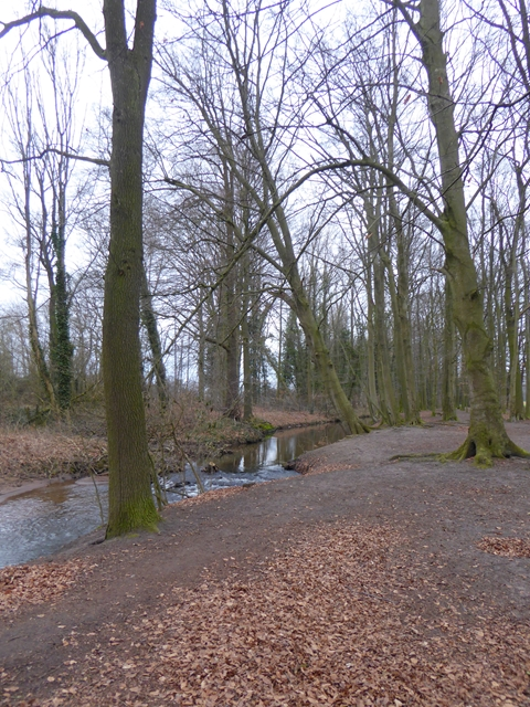 Pfad neben der Lutter (Path beside the River Lutter)