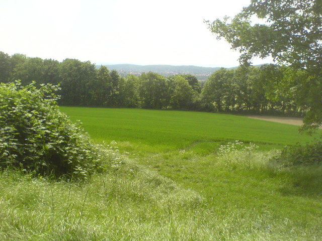 Felder bei Everloh und Blick zum Deister (Fields near Everloh and view towards the Deister hills)