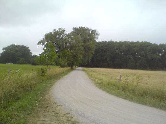 Weg zum Bemeroder Bleek (Track towards Bemeroder Bleek forest)