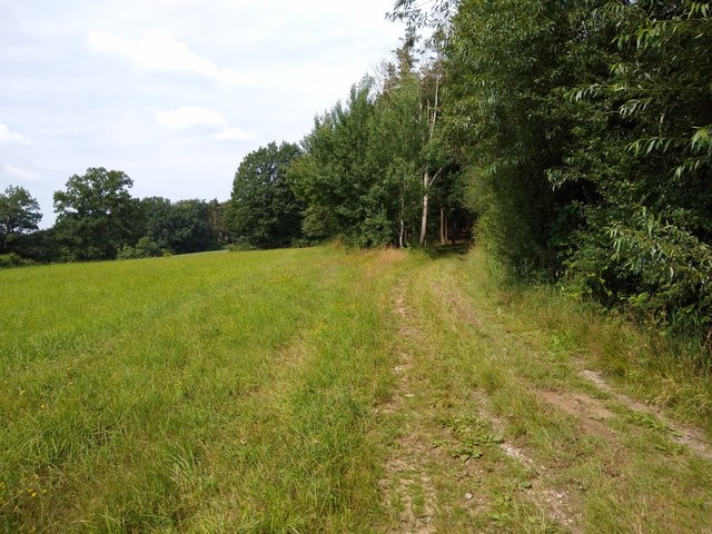 Feldweg am Galgenberg in Abenberg