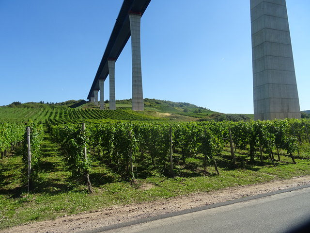 Vineyards below the new Hochmoselbrucke