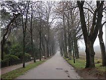 Lindenallee, Worpswede