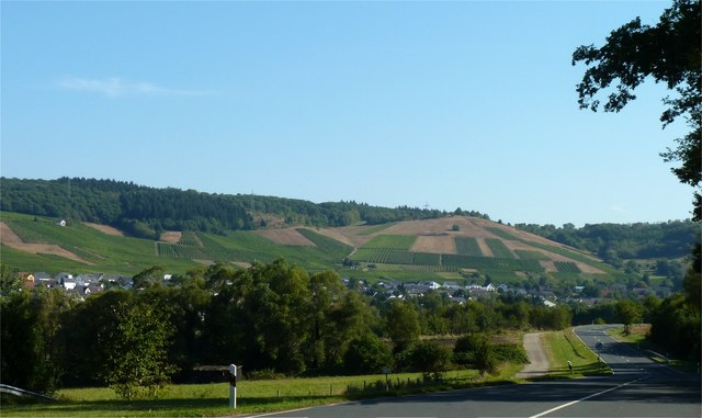 Niedermennig Weinberge (Vineyard hills of Niedermennig)